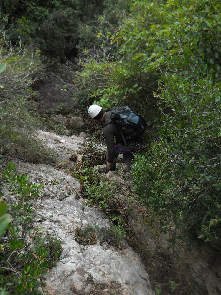 Torrent Font Seca, Montserrat 5