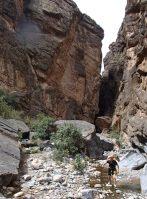 Snake Gorge Canyon, Jebel Akhdar 5