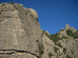 Aresta Brucs a Can Jorba, Montserrat, Espagne 6