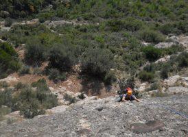 L'avi Trepador a la Codolosa, Montserrat, Espagne 6