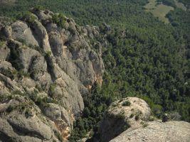 Aresta Brucs a Can Jorba, Montserrat, Espagne 7