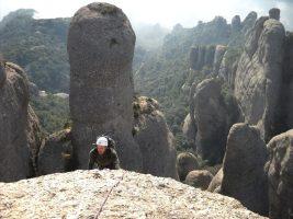 Aresta Brucs a l'Arbret, Agulles, Montserrat, Espagne 8