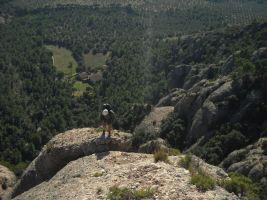 Aresta Brucs a Can Jorba, Montserrat, Espagne 10