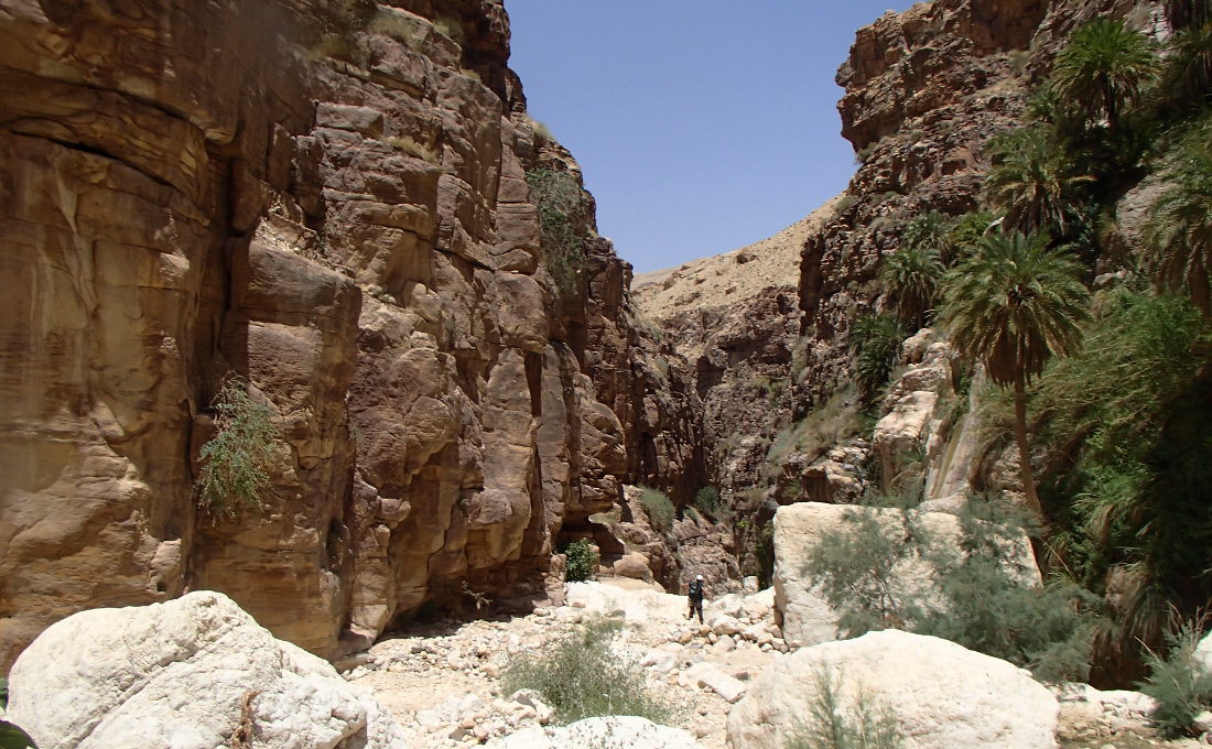 Wadi Kerak, Moab 19
