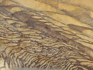 19. rocher peint