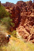 Nuances de Grès, Wadi Tibn, Petra, Jordanie 17