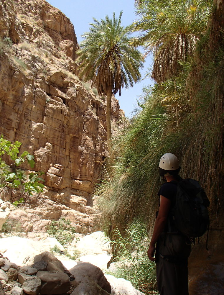 Wadi Kerak, Moab 20