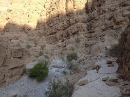 Les Dessous de la Princesse, wadi Naqab, Émirats 4