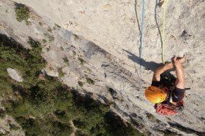 Basalm del Tigre a la paret Bucolica, Oliana 6