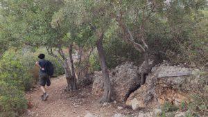 Monte Oro, Santa Maria Navarrese, Ogliastria, Sardaigne 4