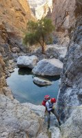 Wadi Qasheh, Sayq Plateau 31