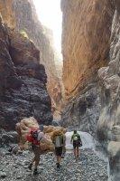 Wadi Qasheh, Sayq Plateau 42