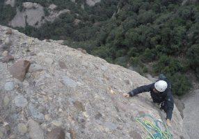 Aresta Arcarons als Plecs del Llibre, Montserrat, Espagne 4