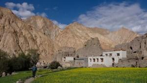 Zinchan, Markha Valley & Zalung Karpo La, Ladakh, Inde 45