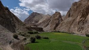 Zinchan, Markha Valley & Zalung Karpo La, Ladakh, Inde 50
