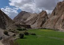 Zinchan, Markha Valley & Zalung Karpo La, Ladakh, Inde 9