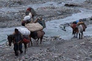 Zinchan, Markha Valley & Zalung Karpo La, Ladakh 54