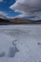 Tso Kar au Tso Moriri, Ladakh, Inde 8