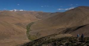 Tso Kar au Tso Moriri, Ladakh, Inde 19