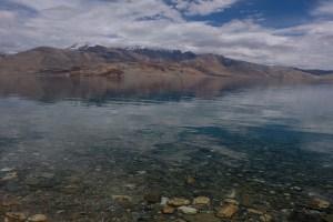 Tso Kar au Tso Moriri, Ladakh, Inde 49