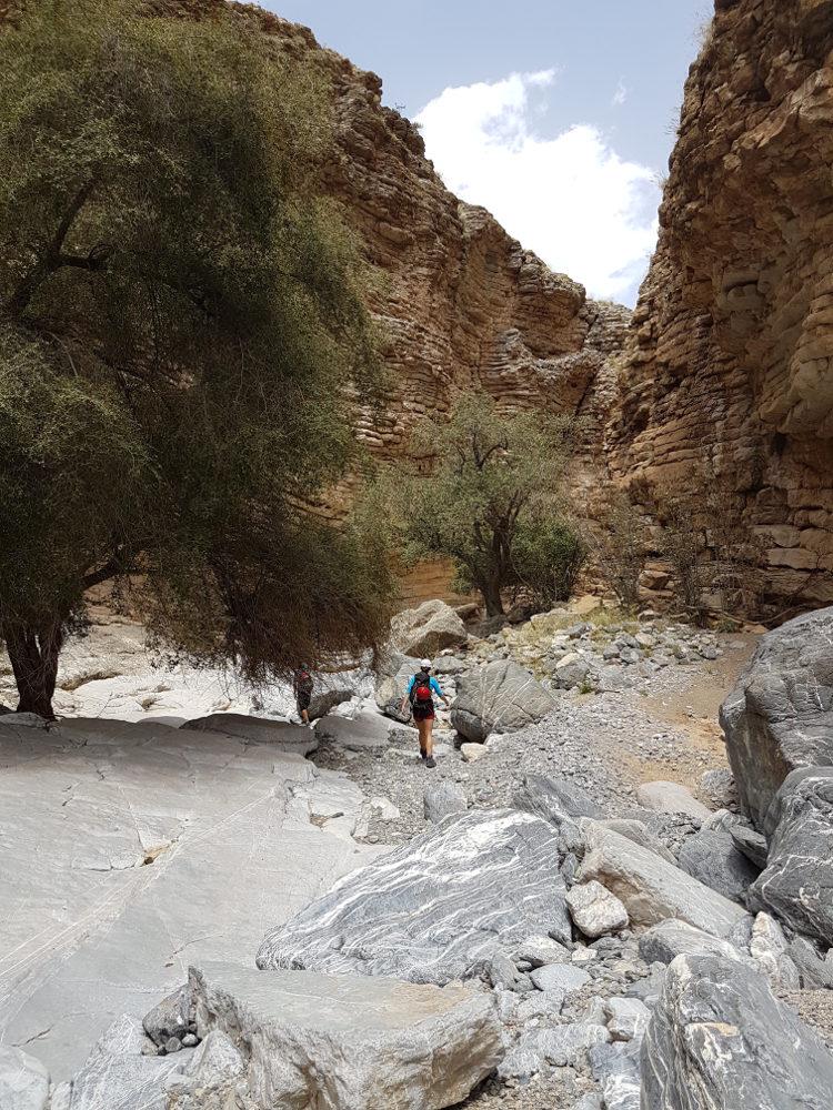 Wadi Aqabat El Biyout, Sayq Plateau 24