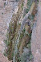 Wadi Aqabat El Biyout, Sayq Plateau 45
