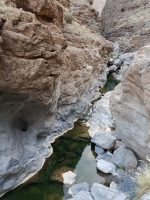 Wadi Aqabat El Biyout, Sayq Plateau 48