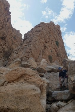 Wadi Naqab Trek [25]
