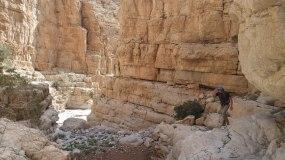 Wadi Naqab Trek [30]