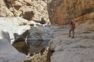 wadi Naqab trek