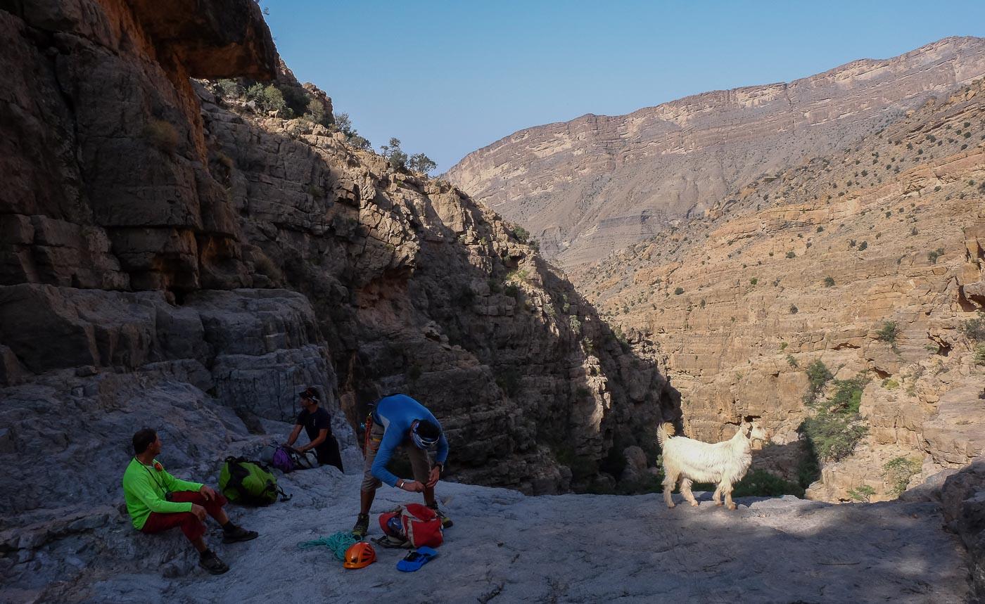 Wadi Kamah, Sayq Plateau 31