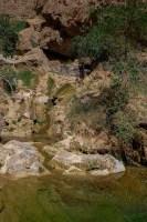 Wadi Kamah, Sayq Plateau 59