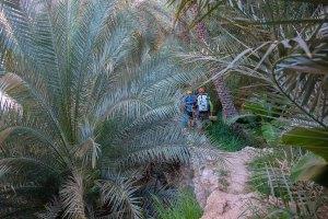 Mibam à Umq Bir, Wadi Tiwi, Oman 7