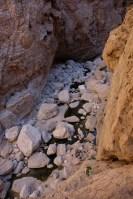 Mibam à Umq Bir, sentier bédouin, Wadi Tiwi, Oman 13
