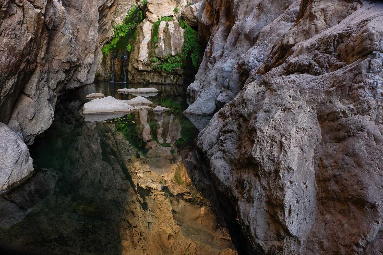 Wadi Halfain, Sayq Plateau 50