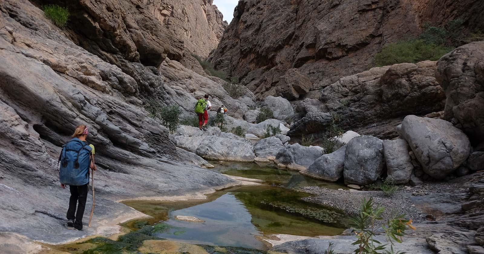 Wadi Halfain, Sayq Plateau 83