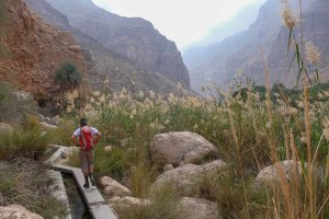Wadi Naqma, Hajar Oriental 7