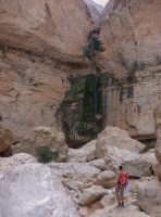 Wadi Naqma, Hajar Oriental 20
