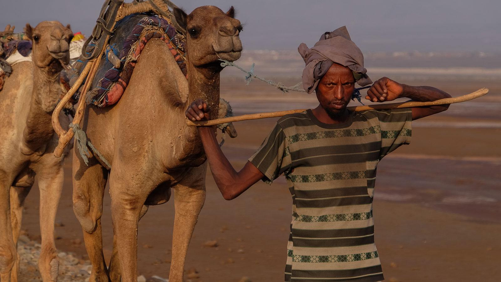Les couleurs du sel, Danakil, Ethiopie 5