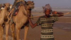 Les couleurs du sel, Danakil, Ethiopie 7