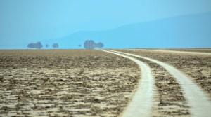 Les couleurs du sel, Danakil, Ethiopie 59