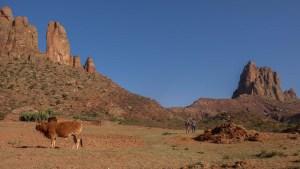 Harigwa Camp à Megab (2ème jour), Gheralta, Tigray, Ethiopie 7