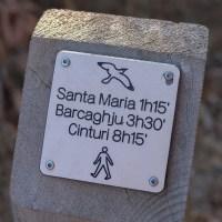 Sentier des douaniers, Macinaggio à Bargaggio, Corse 7
