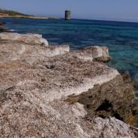 Sentier des douaniers, Macinaggio à Bargaggio, Corse 15
