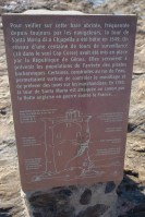 Macinaggio à Bargaggio, sentier des douaniers, Cap Corse 25