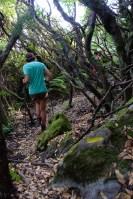 Les crêtes de Pinu, Corse 21
