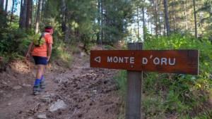 Monte Oro, Vizzanova, Corse 7
