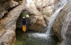 Ruisseau d'Aneddu, Olivese 16