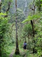 Cascades du Bras d'Anette, Saint-Benoit, La Réunion 7