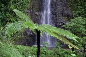 Cascades du Bras d'Anette, Saint-Benoit, La Réunion 10